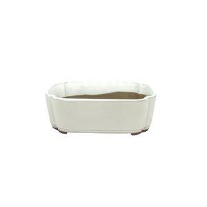 Oval  21.5 x 17 x 7 cm