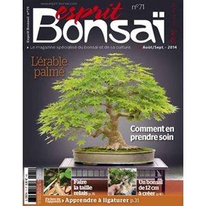 Esprit-Bonsai - Série régulière