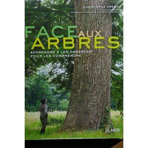 Face aux arbres - Drenou