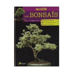Les bonsaï - Choisir et cultiver