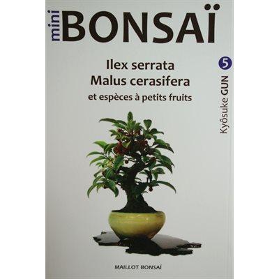 Mini-Bonsai - Malus Ilex - Kiosuke Gun