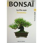 Mini-Bonsai - Pin noir - Kiosuke Gun