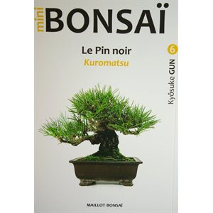 Mini-Bonsai - Pin noir - Kiosuke Gun